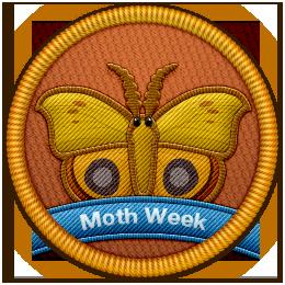 Project Noah NMW patch