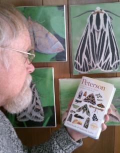 Carl contemplates moths