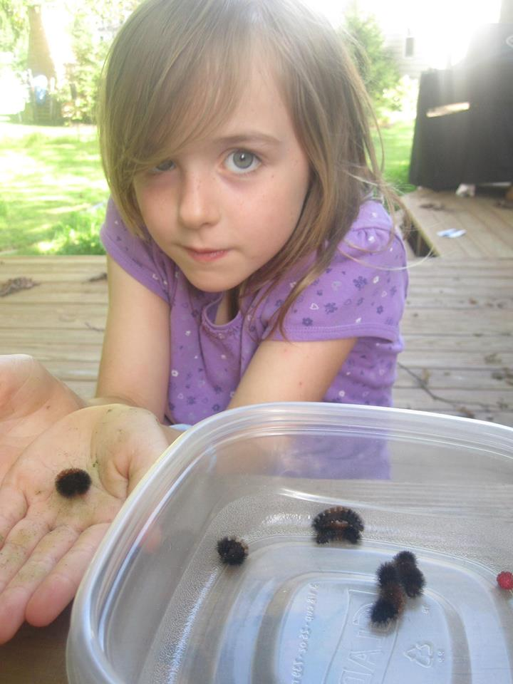 Book winner Caelyn with some wooly bears.