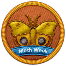 "A special, limited-edition patch was awarded to users who contributed to the ""Moths of the World"" mission on Project Noah."