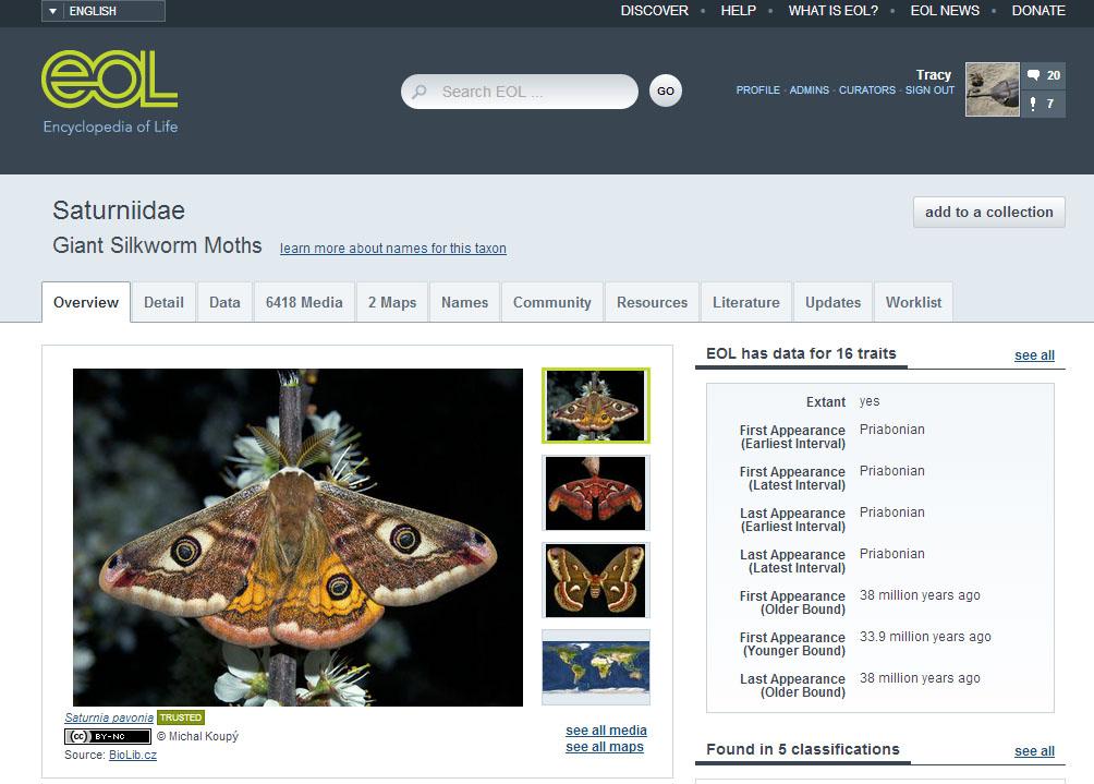 moth_trait_bank