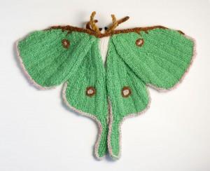 Actias, Luna moth