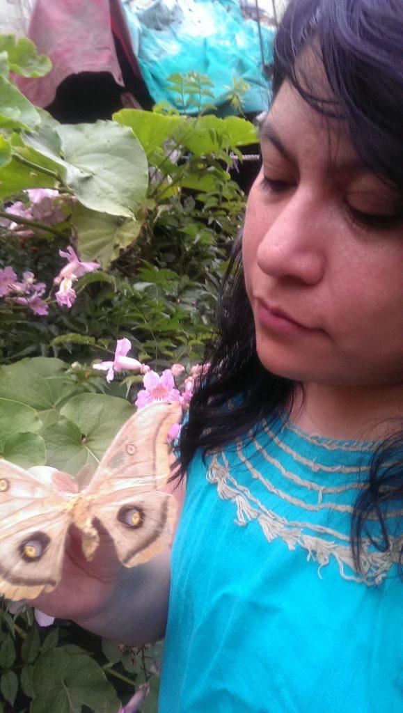 Yo y una Antheraea polyphemus