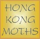 Hong Kong Moths