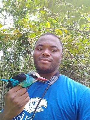 Dr. Benedictus Freeman, NMW country coordinator in Liberia, poses with a Blue-breasted Kingfisher.